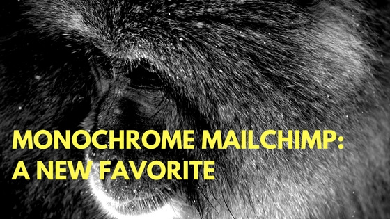 Monochrome MailChimp: A New Favorite